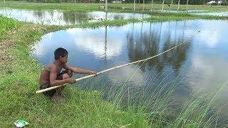 Fishing with hook | Best Fish Hunting Video