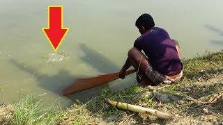 Best net fishing।Big fish hunting by cast net।Net fishing in the Village(part-95)
