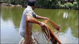Best Net fishing on boat। Big fish hunting by cast net। Net fishing in the pond(part-90)