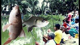 Festivale Fish Hunting By Fish Hunter With Fishing Competition