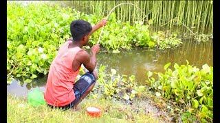 Traditional Fish hunting in village Canal || Fish hunting at the Canal with beautiful natural