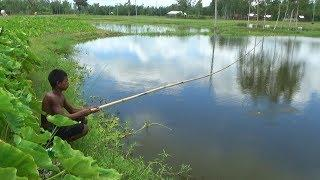 Fishing with hook  Best Fish Hunting Video (Part-3)