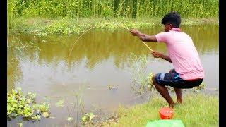 Asian Traditional Fish hunting in village Canal || Fishing For big catfish & Mirror carp Fish